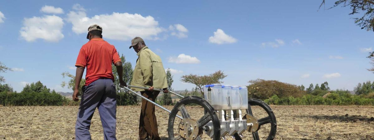 Farmers pulling a seeding cart