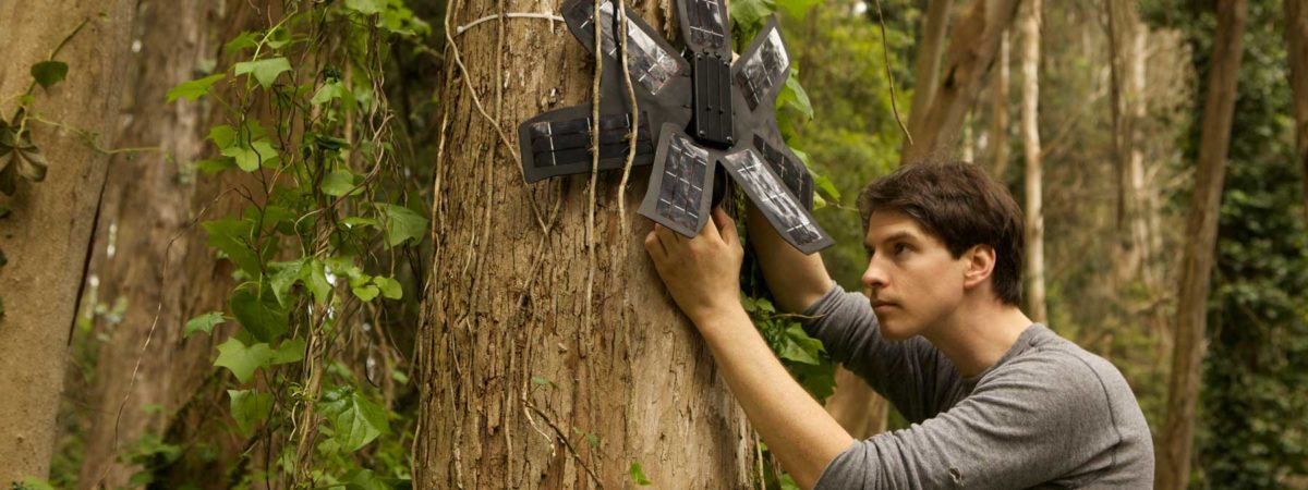 Installing a tracking device in a tree in a rainforest