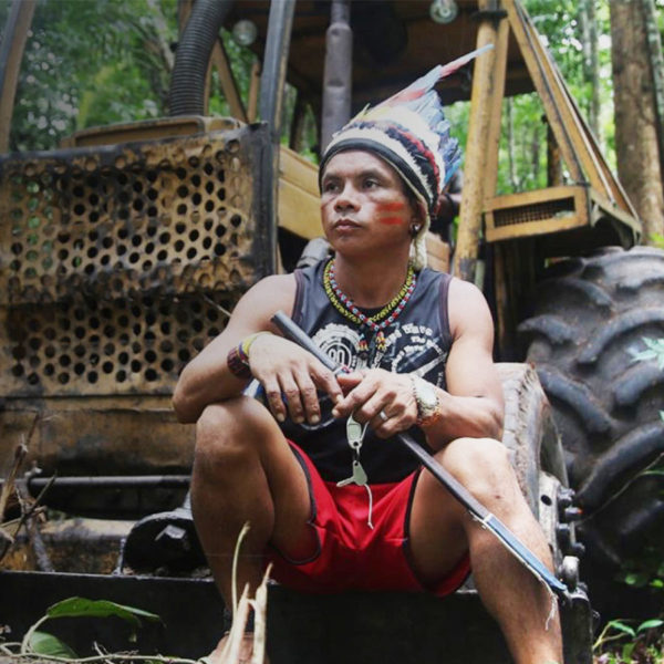 Man sitting on bulldozer in a rainforest