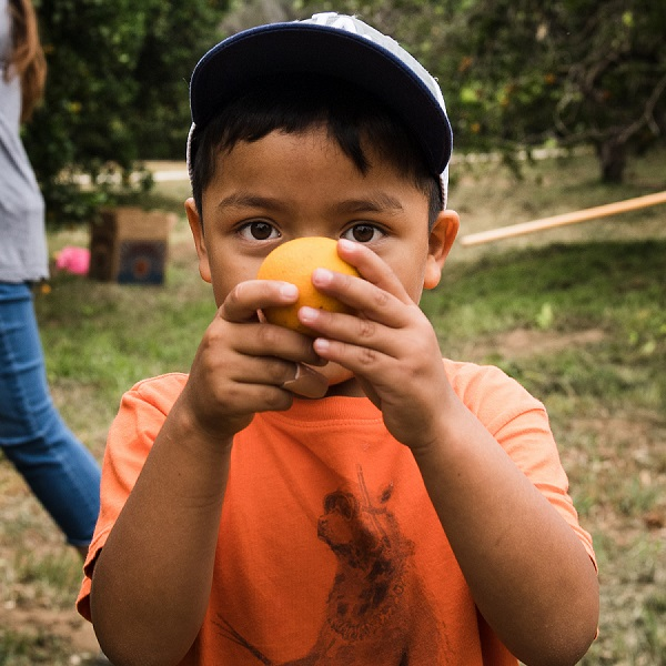 A young boy in an orange t-shirt peers out from behind an orange he holds close to his face