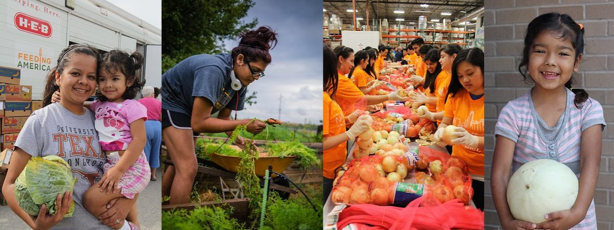 Multiple photos depicting the organizations work are strung together. A woman holding her daughter and produce; a young volunteer picking vegetables from a garden; a group of volunteers inspecting bags of onions; a small young girl smiling holding a honeydew
