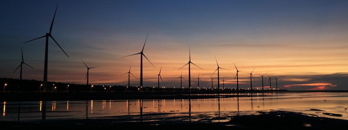Windmills on shore