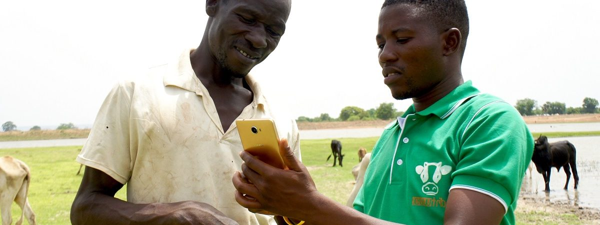 A member of CowTribe demonstrates how to use the mobile platform on his cell phone to a farmer in Ghana