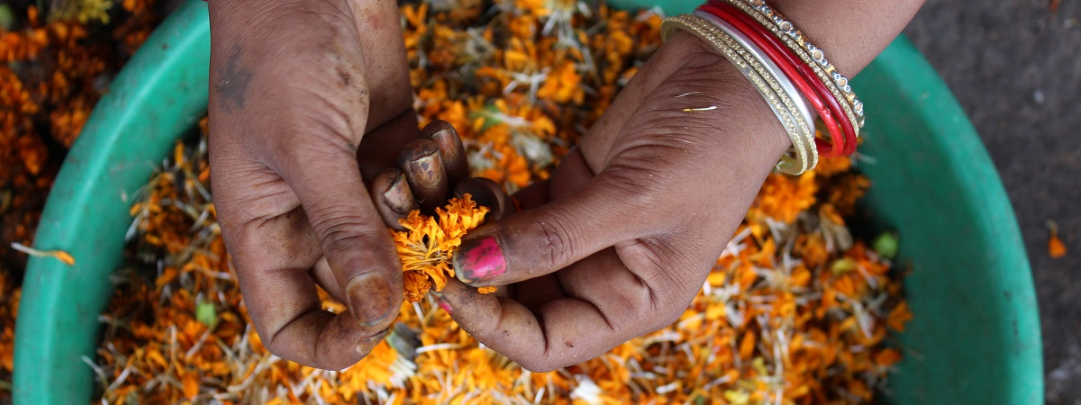 An Indian woman's hands are in a bright and colorful basket of flowers